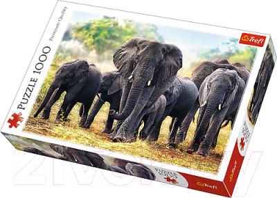 Пазл Trefl Африканские слоны / 10442