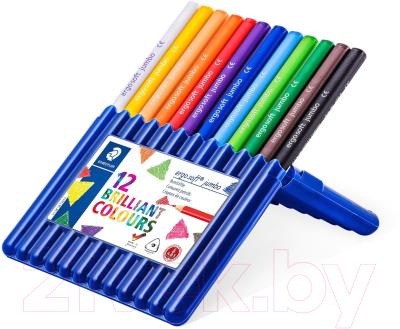 Набор цветных карандашей Staedtler 158 SB12