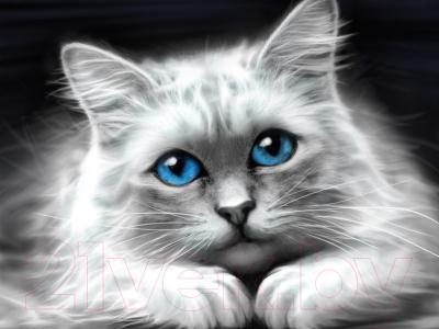 Набор алмазной вышивки Алмазная живопись Голубоглазая кошка / АЖ-1761