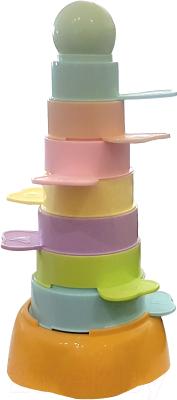 Развивающая игрушка Toys 2209-9