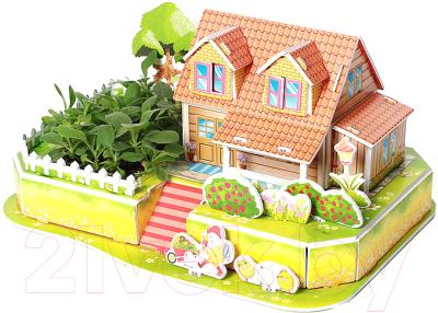Набор для выращивания растений Darvish 3D Чудесный огород / DV-T-2178-4