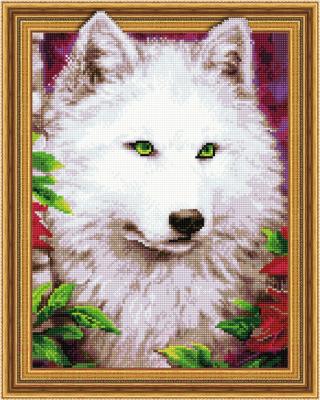 Набор алмазной вышивки Picasso Взгляд зеленых глаз (5PD4050044)