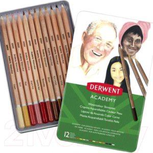 Набор акварельных карандашей Derwent Academy 2300386