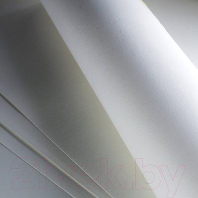 Бумага для рисования Fabriano Accademia / 50813200