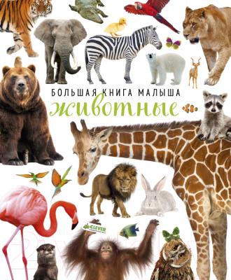 Развивающая книга CLEVER Большая книга малыша. Животные