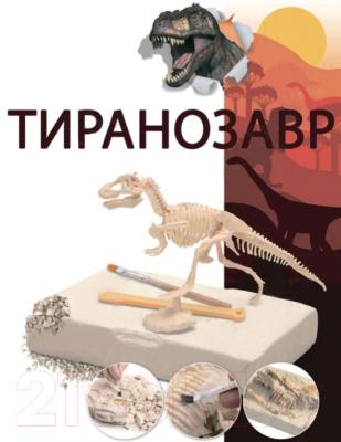 Набор для творчества Bradex Юный археолог DE 0274