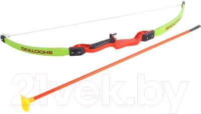Лук игрушечный Bradex Стрельба из лука / DE 0369