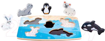 Развивающая игрушка Hape Арктические животные / E1620-HP