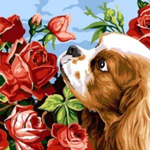 Картина по номерам Picasso Аромат роз (PC3040033)