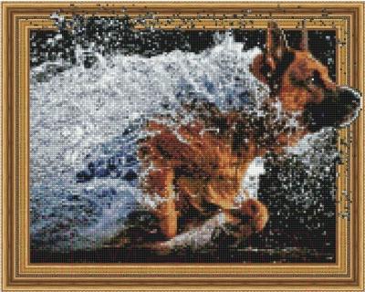 Набор алмазной вышивки Picasso Бегом сквозь воду
