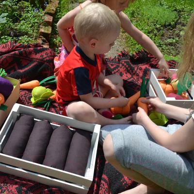 Набор игрушечных продуктов Paremo Овощи в ящике с карточками / PK320-18