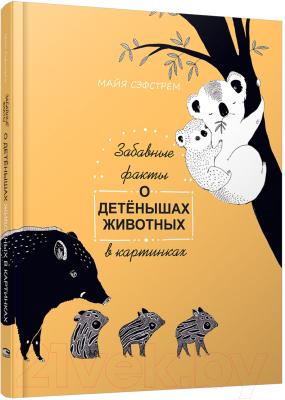 Энциклопедия Попурри Забавные факты о детенышах животных в картинках