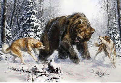 Набор алмазной вышивки Wizardi Лайки и медведь / WD2456